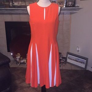 BNWT Taylor dress